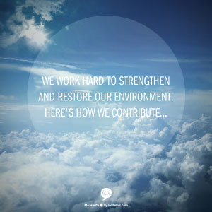 We work hard to strengthen and restore our environment. Here's how we contribute...